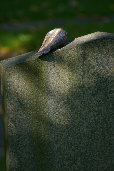 photoblog image Gravsten - Headstone 5