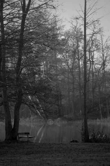photoblog image Bänk - bench 2