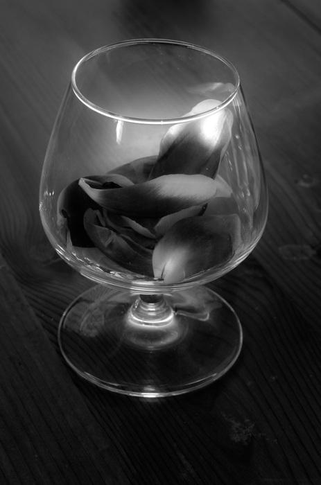 photoblog image Glas - Glass