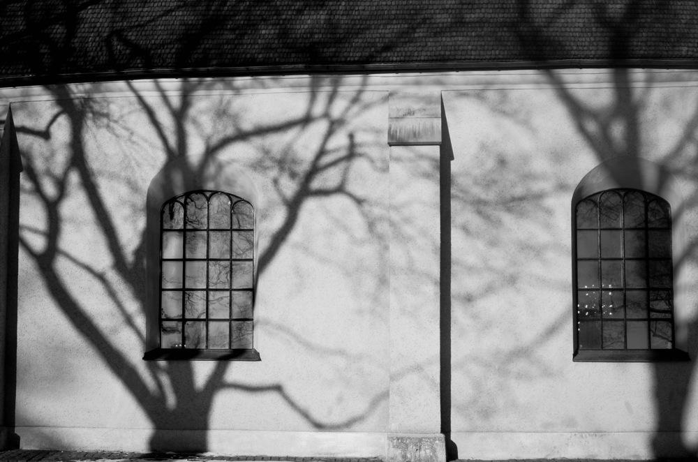 photoblog image Skuggor - Shadows