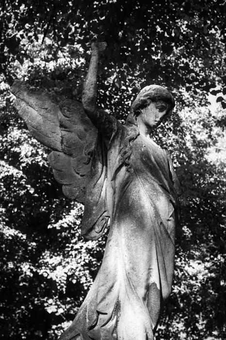 photoblog image Ängel - Angel